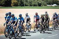 world champion Alejandro Valverde (ESP/Movistar) in the peloton. <br /> <br /> Stage 4: Reims to Nancy (215km)<br /> 106th Tour de France 2019 (2.UWT)<br /> <br /> ©kramon