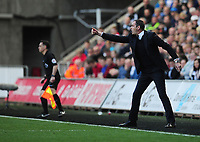 Swansea City manager Paul Clement<br /> <br /> Photographer Kevin Barnes/CameraSport<br /> <br /> The Premier League - Swansea City v Stoke City - Saturday 22nd April 2017 - Liberty Stadium - Swansea<br /> <br /> World Copyright &copy; 2017 CameraSport. All rights reserved. 43 Linden Ave. Countesthorpe. Leicester. England. LE8 5PG - Tel: +44 (0) 116 277 4147 - admin@camerasport.com - www.camerasport.com