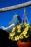 Europe-Alps, SWITZERLAND, Schweiz, Zurich, Luzerne, Bern, Lausanne, St-Moritz, +keyword search