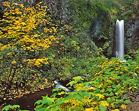 Upper Multnomah Falls in Columbia River Gorge National Scenic Area, Oregon