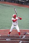 Baseball-5-Amaro 2013