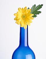 Blue Vase with Yellow Flower | Blaue Vase mit gelber Blume