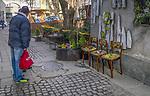 2020-02-16 Kraków. Kompozycje kwiatowe w pasażu pomiędzy ulicą Józefa a Meiselssa na Krakowskim Kazimierzu.