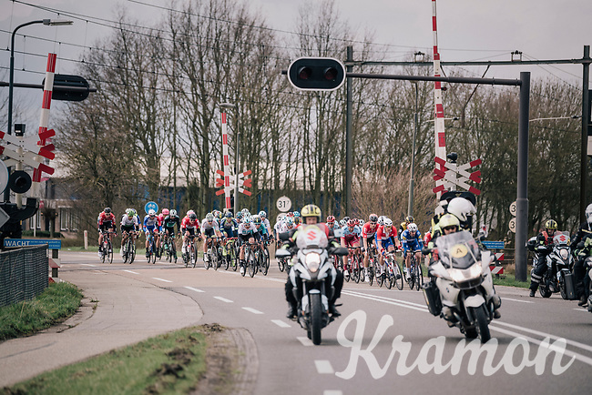 1st peloton at the railroad crossing that will go down in a short while and be the cause of exclusion for more then 30 riders that crossed here while the alarm was ringing...<br /> <br /> 106th Scheldeprijs 2018 (1.HC)<br /> 1 Day Race: Terneuzen (NED) - Schoten (BEL)(200km)