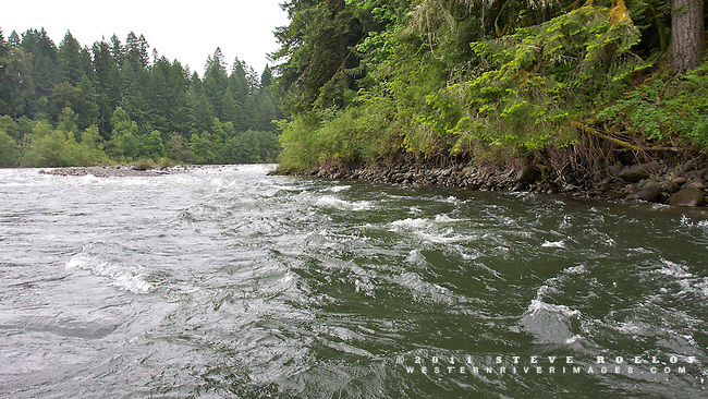 The Sandy River in the spring.