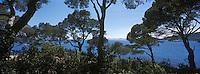 Europe/Provence-Alpes-Côte d'Azur/83/Var/Rayol-Canadel-sur-Mer: Domaine du Rayol - Jardin appartenant au Conservatoire du Littoral - Côte rocheuse à la pointe du Figuier