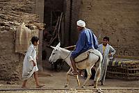 Afrique/Egypte/Env de Louxor/Ancienne Thèbes: Homme et sa mûle