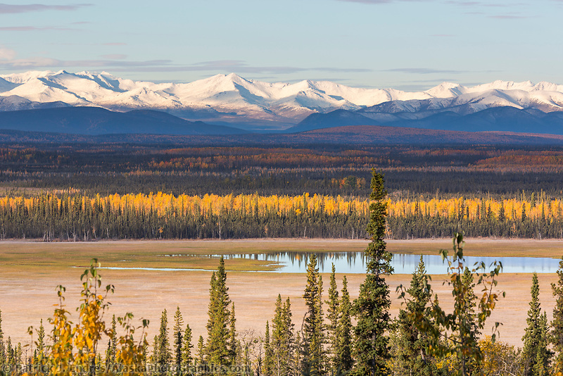 The Tetlin National Wildlife Refuge, 730,000 acres, was established in 1980 to conserve and manage habitat critical to migratory and resident wildlife for the benefit of present and future generations. Located along the Alaska Highway, visitors may enjoy overlook areas and the visitor's center.