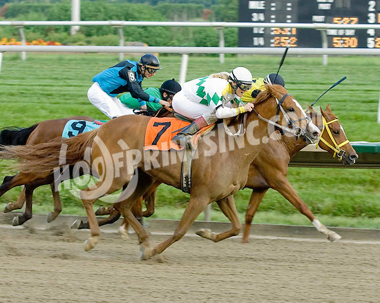 Vaavaa Voom winning at Delaware Park on 6/15/09