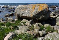 Findlinge an der K&uuml;ste von Helligpeder auf der Insel Bornholm, D&auml;nemark, Europa<br /> boalders at the coast of Helligpeder, Isle of Bornholm Denmark