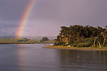 Elkhorn Slough, CA.  Photo Magnet Edit by Frank Balthis