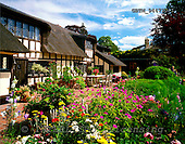 Tom Mackie, FLOWERS, photos, Thatch Cottage & Garden, Dedham, Essex, England, GBTM944720-1,#F# Garten, jardín
