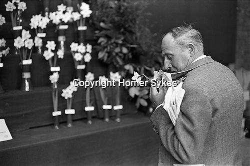 Royal Horticultural society flower show. Victoria, London England 1969.<br /> <br /> PARIS 2015 LES DOUCHES LA GALERIE<br /> Vintage silver gelatin print. 9x6 on 10x8. <br /> <br /> Vintage print made by Homer Sykes.<br /> <br /> THIS ARE MEDIUM RES FILES ONLY FOR VIEWING AND SHOULD NOT BE SENT OUT