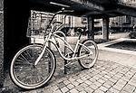 Bike at Sydney University, NSW, Australia