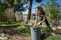 Fountain Community Gardens in Los Angeles.<br /> Occidental College students, staff and alumni volunteer all over the Los Angeles area as part of MLK Day of Service, organized by the Office of Community Engagement (OCE), on Saturday, Jan. 26, 2019.<br /> In honor of Dr. King's spirit of service and peace, the aim of the MLK Day of Service is to engage Oxy students, staff, faculty, and alumni in community-based projects.<br /> (Photo by Marc Campos, Occidental College Photographer)