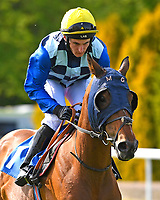 Saint helena ridden by Jordan Uys goes down to the start  of The Smith & Williamson Handicap (Class 6)    during Afternoon Racing at Salisbury Racecourse on 17th May 2018