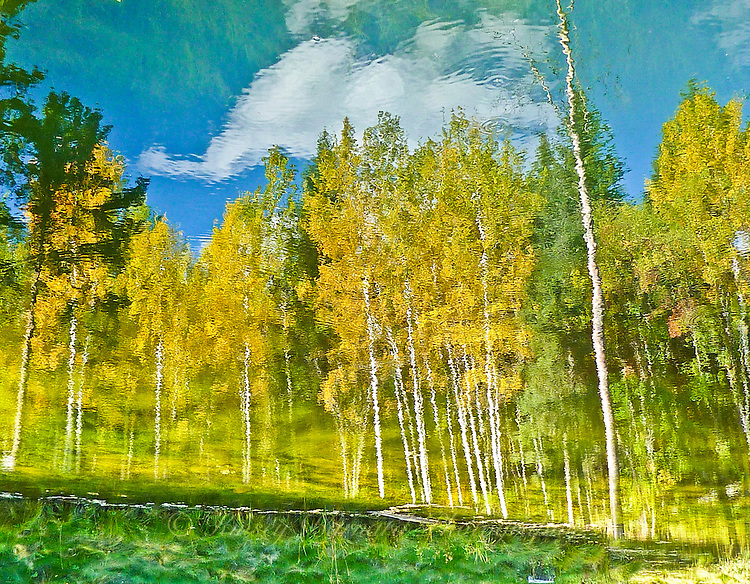 """THE ILLUSION OF FALL""<br />