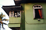 A dog peers out of the window at Chimbai Village in Bandra West, Mumbai
