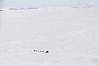 Tuesday March 13, 2012  Ken Anderson on Golovin Bay nearing White Mountain Checkpoint. Iditarod 2012