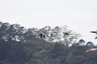 SAO PAULO, SP - 15.12.2014 - SOBE NÍVEL DA GUARAPIRANGA - Vista da represa do Guarapiranga na manhã desta segunda-feira (15) na região do Jd. Capela, zona sul de São Paulo. Segundo a última atualização da SABESP, a represa apresenou leve alta com o atual volume de 35,8% de sua capacidade. O sistem da Guarapiranga ainda está em socorro ao sistema Cantareira mantém volume baixo, com 7,2%.<br /> <br /> <br /> (Foto: Fabricio Bomjardim / Brazil Photo Press)