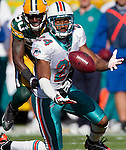 2010-NFL-Wk6-Dolphins at Packers