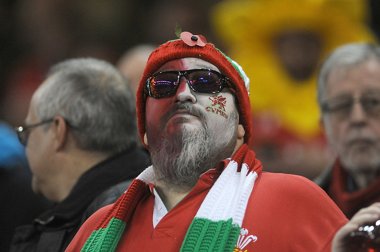 Fan prior to kick off <br /> <br /> Photographer Ian Cook/CameraSport<br /> <br /> Under Armour Series Autumn Internationals - Wales v Australia - Saturday 10th November 2018 - Principality Stadium - Cardiff<br /> <br /> World Copyright © 2018 CameraSport. All rights reserved. 43 Linden Ave. Countesthorpe. Leicester. England. LE8 5PG - Tel: +44 (0) 116 277 4147 - admin@camerasport.com - www.camerasport.com