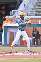 Tennessee Volunteers right fielder Justin Ammons (9) awaits a pitch during a game against the University of North Carolina Greensboro (UNCG) Spartans at Lindsey Nelson Stadium on February 24, 2018 in Knoxville, Tennessee. The Volunteers defeated Spartans 11-4. (Tony Farlow/Four Seam Images)