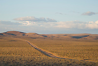 Dirt road near Beatty, Nevada