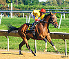 Indian Red winning at Delaware Park on 10/10/16