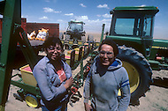 May 6th to 13th, 1985 in Navajo Reserve, AZ. Navajo Agriculture Products Industry (NAPI) control and regulate all the agriculture and the irrigation in the Navajo Reserve. The Navajo Reserve is 25000 sq miles with the population of 165 thousand.