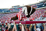 Wisconsin Badgers mascot Bucky Badger does pushups after a touchdown during the 2012 Rose Bowl NCAA football game against the Oregon Ducks in Pasadena, California on January 2, 2012. The Ducks won 45-38. (Photo by David Stluka)