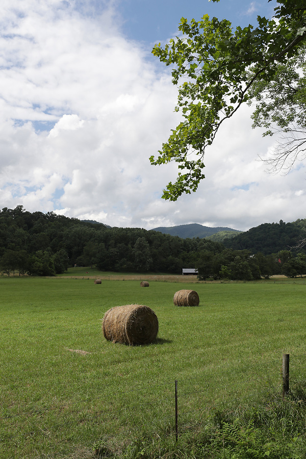 Scenic views in Central Virginia. Photo/Andrew Shurtleff Photography, LLC