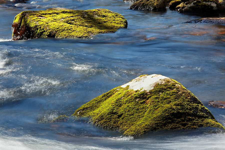 Little Stony Creek flows around green mossy boulders, Pembroke, Giles County, Virginia, USA.