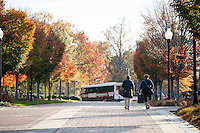 Old Main Plaza with fall leaves<br />  (photo by Megan Bean / &copy; Mississippi State University)