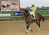 Back Forty  winning at Delaware Park on 10/25/12