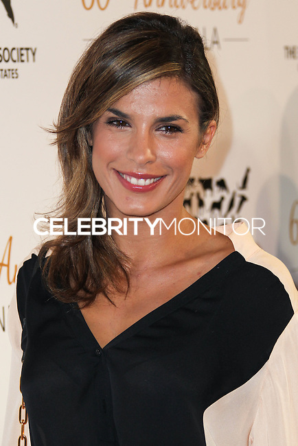 BEVERLY HILLS, CA, USA - MARCH 29: Elisabetta Canalis at The Humane Society Of The United States 60th Anniversary Benefit Gala held at the Beverly Hilton Hotel on March 29, 2014 in Beverly Hills, California, United States. (Photo by Xavier Collin/Celebrity Monitor)