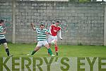 6845-6906.Park v Castleisland at the Park Soccer grounds, Brendan's Park, Tralee, on Friday evening.