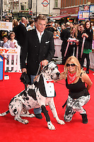 "Jilly Johnson arriving for the premiere of ""Pudsey the Dog the movie"" at the Vue cinema, Leicester Square, London. 13/07/2014 Picture by: Steve Vas / Featureflash"