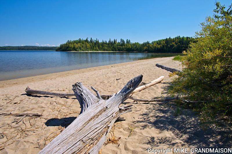 Driftwood on White Lake<br />White Lake Provincial Park<br />Ontario<br />Canada