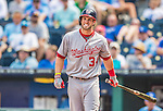 25 August 2013: Washington Nationals outfielder Bryce Harper stands at home plate, showing signs of pain after fouling a ball onto his left foot during a game against the Kansas City Royals at Kauffman Stadium in Kansas City, MO. The Royals defeated the Nationals 6-4, to take the final game of their 3-game inter-league series. Mandatory Credit: Ed Wolfstein Photo *** RAW (NEF) Image File Available ***