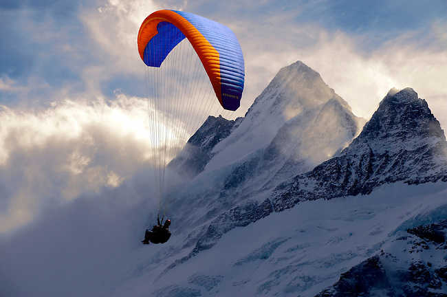 Paragliders in the Swiss Alps near the Schreckhorn  mountain above the Grindelwald valley - Swiss Alps - Switzerland