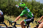 The peloton including Green Jersey Peter Sagan (SVK) Bora-Hansgrohe during Stage 16 of the 2019 Tour de France running 177km from Nimes to Nimes, France. 23rd July 2019.<br /> Picture: ASO/Pauline Ballet | Cyclefile<br /> All photos usage must carry mandatory copyright credit (© Cyclefile | ASO/Pauline Ballet)