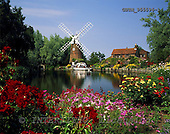 Tom Mackie, FLOWERS, photos, 4x5, 5x4, Britain, cottage, cottage garden, East Anglia, England, EU, Europa, Europe, European, Hunsett Mill, Norfolk Broads National Park, England, GBTM955596-1,#F# Garten, jardín