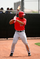 Angel Castillo / Orem Owlz..Photo by:  Bill Mitchell/Four Seam Images