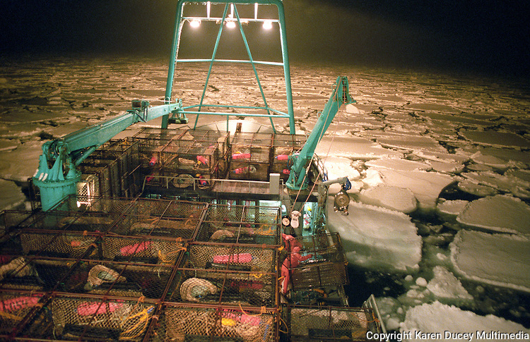 Bering sea crab fishing in stormy seas karen ducey for Fish and game jobs