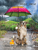 PAUL,REALISTIC ANIMALS, REALISTISCHE TIERE, ANIMALES REALISTICOS, paintings+++++NW_Umbrella-Dog-B,USLGNW14,#a#, EVERYDAY ,funny photos