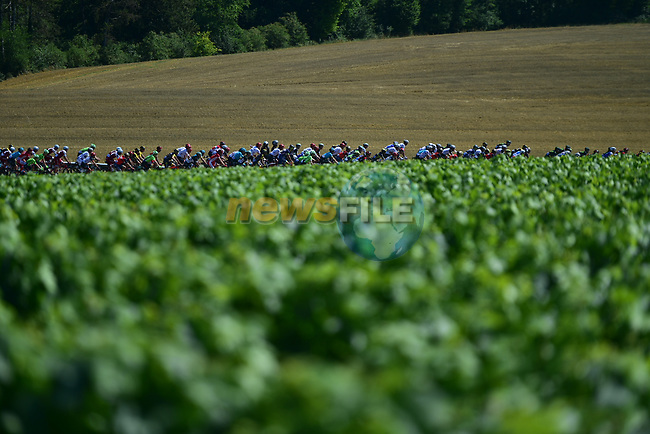 The peloton in action during Stage 6 of the 104th edition of the Tour de France 2017, running 216km from Vesoul to Troyes, France. 6th July 2017.<br /> Picture: ASO/Pauline Ballet | Cyclefile<br /> <br /> <br /> All photos usage must carry mandatory copyright credit (&copy; Cyclefile | ASO/Pauline Ballet)