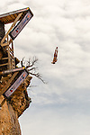 2015 Red Bull Cliff Diving - Possum Kingdom Lake