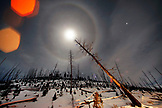 USA, Wyoming, Yellowstone National Park, night shot of a moonbow landscape near Petrified Tree