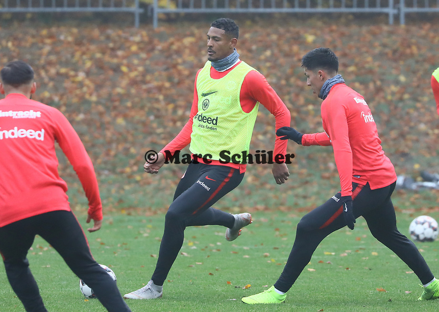 Sebastien Haller (Eintracht Frankfurt) gegen Carlos Salcedo (Eintracht Frankfurt) - 14.11.2018: Eintracht Frankfurt Training, Commerzbank Arena, DISCLAIMER: DFL regulations prohibit any use of photographs as image sequences and/or quasi-video.